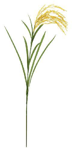 造花「塩ビ製稲穂」全長74・実長20・リーフ16〜33cmBRS5042