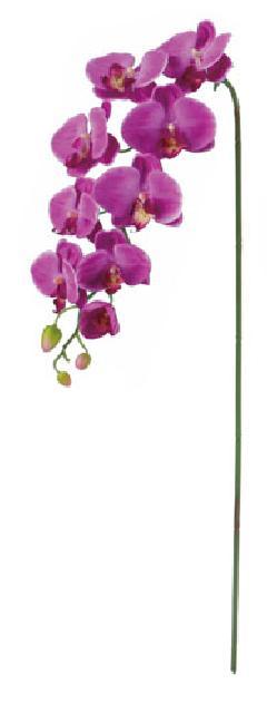 胡蝶蘭(L)×9(パープル・花径4〜10cm全長105cm)FLS5183L