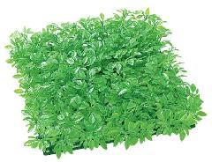 3枚セット卸価格ガーデンマット屋外可(ティーリーフ・ライトグリーン)30×30×6cmプラ製)LEE0718