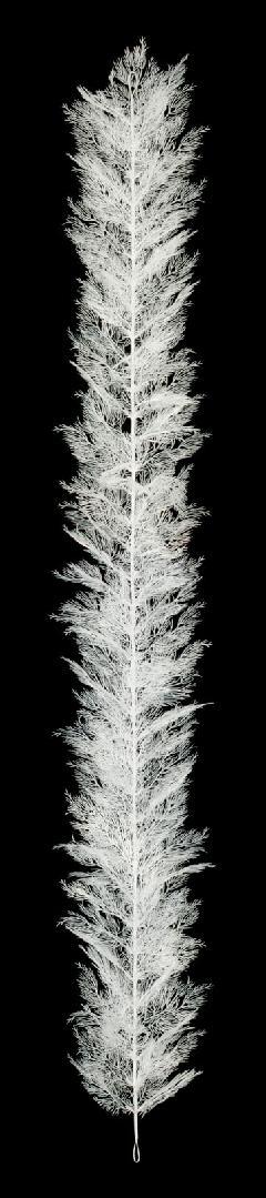 ホワイト樹氷ガーランド(180cm6本プラ製)LEG3017