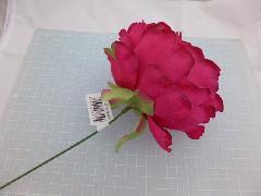 プリンセスピオニーピック(ビューティー)花径約12・全長約23cmFLP6015