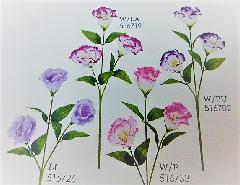 1本¥138造花(トルコキキョウ×3輪単色36本入り)2759