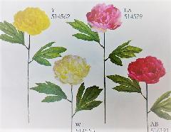 1本¥138造花(ピオニー×1・単色36本入り)2590N