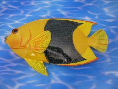 熱帯魚トロピカルフィッシュ(F)38cmプラスチック製9629