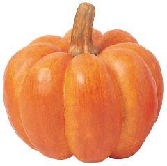 かぼちゃ・ハロウィンディスプレイ(ジャイアントパンプキンL・25cm)VF230L
