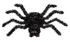 ハロウィンディスプレイ(ブラックスパイダーw47cm)DE1407