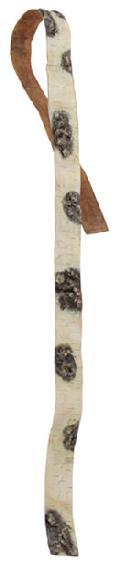 白樺の皮ワイヤー入り180cm(6.5cm幅)DE1236