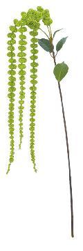 アマランサス×3(グリーン全長122cm)FLS5283