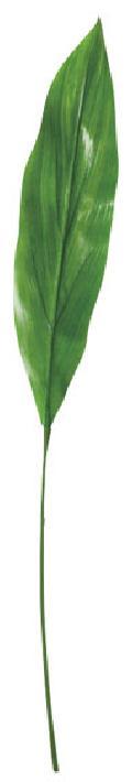 カラージュームリーフ(L・グリーン・リーフ35cm全長70cm)LES5072L