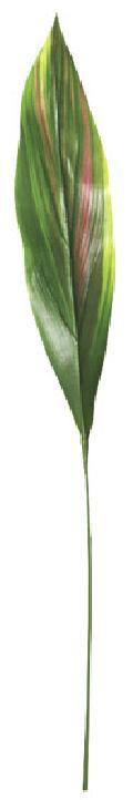 カラージュームリーフ(L・グリーン/レッド・リーフ35cm全長70cm)LES5072L
