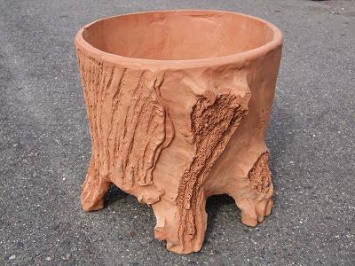 木根鉢 大