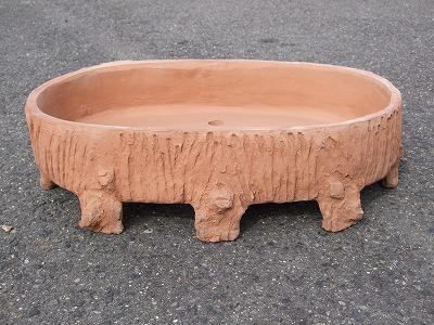 木根鉢 平大