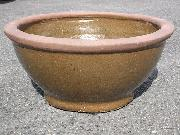 手ごろなサイズの水鉢