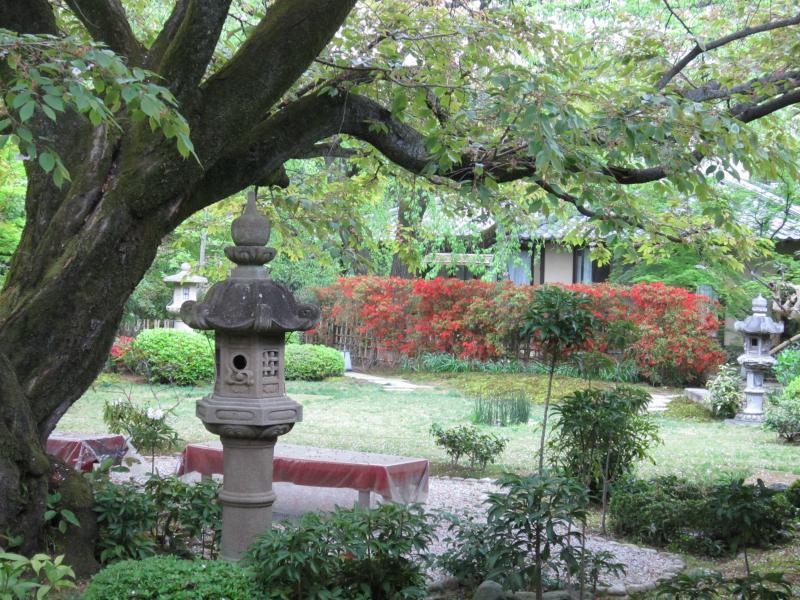 G旅館光淳の庭園