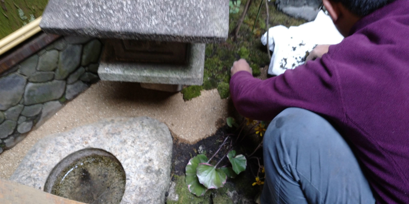 H様邸茶庭 苔の張り替え