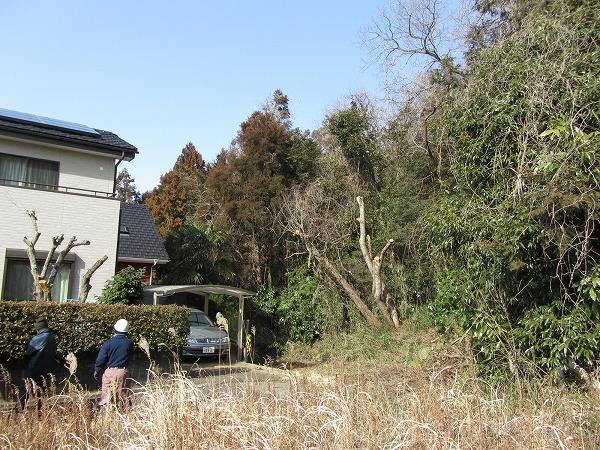 隣地の山裾の雑木の伐採