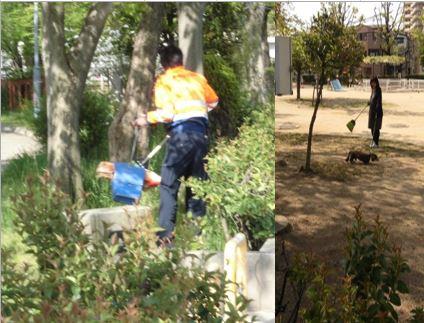 公園の清掃のようす