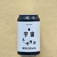 宇宙LAND(DDH DIPA) 350ml缶