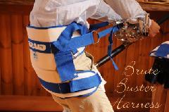 ブレイド ブルートバスター ハーネス #30950 MED