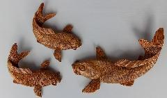 NO 557  日本の肥松材 鯉