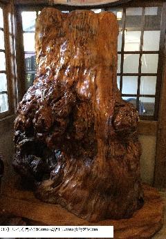 NO 666-3 屋久杉自然木衝立瘤 ( 色々)特別品