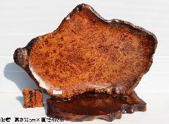 NO 756    屋久杉飾り皿          泡瘤 (あわこぶ)