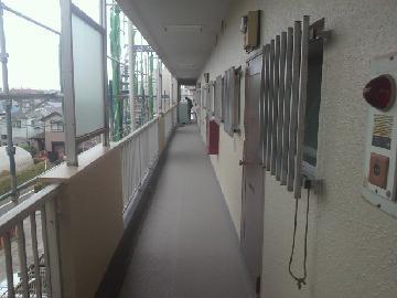 マンション 廊下 シート防水