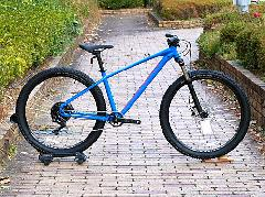 SPECIALIZED PITCH EXPERT 1X 2020