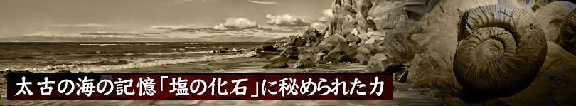 安心・安全なヒマラヤ岩塩