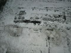 千葉県我孫子市 屋上陸屋根 防水塗装工事 約40万円