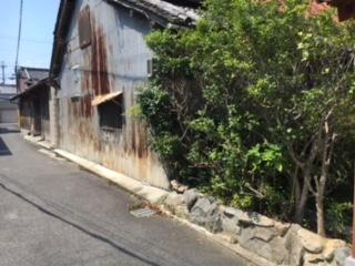 年季の入ったトタン壁と石積み