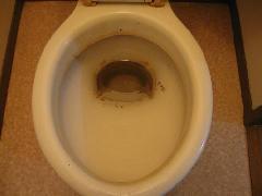 空室 トイレクリーニング