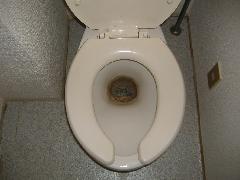 トイレ 尿石落とし
