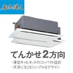 日立 省エネの達人 P280型 ツイン RCID-AP280SHP2
