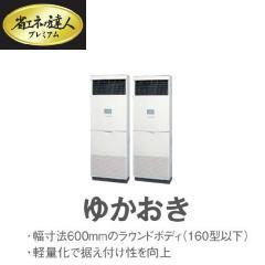 日立 省エネの達人 プレミアム P280型 ツイン RPV-AP280GHP