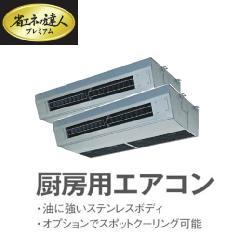 日立 省エネの達人 プレミアム P160型 ツイン RPCK-AP160GHP1