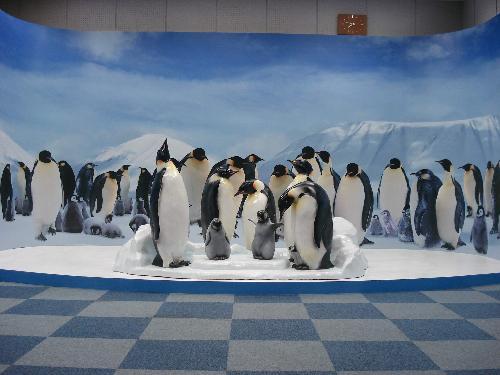 ペンギンレプリカ