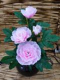 【提灯 盆提灯 盆ちょうちん お盆 初盆 ちょうちん 新盆】 グランドルミナス ルミナス ボタン花 牡丹花