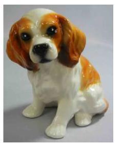 キャバリエ 犬 イタリア製 陶器  H6-F227BA