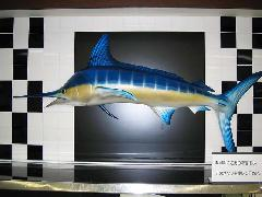 魚のFRP造形製作