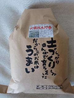 28年産奈良・健康農園やまとのれんげ米 玄米5kg 【精米無料!】