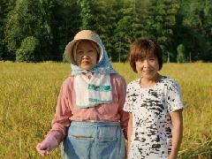 【予約販売】28年産 三重県赤目 横山さんの減農薬特別栽培コシヒカリ 玄米5kg 【精米無料!】