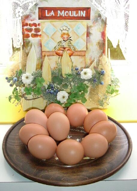西田養鶏場 能勢の地玉子 Sサイズ 10個