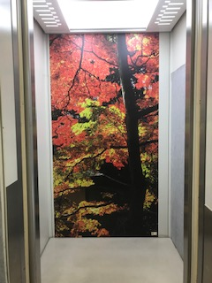 ホテル/エレベーター内に設置