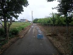 古河市内道路舗装修繕