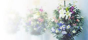 供花・供物レンタル