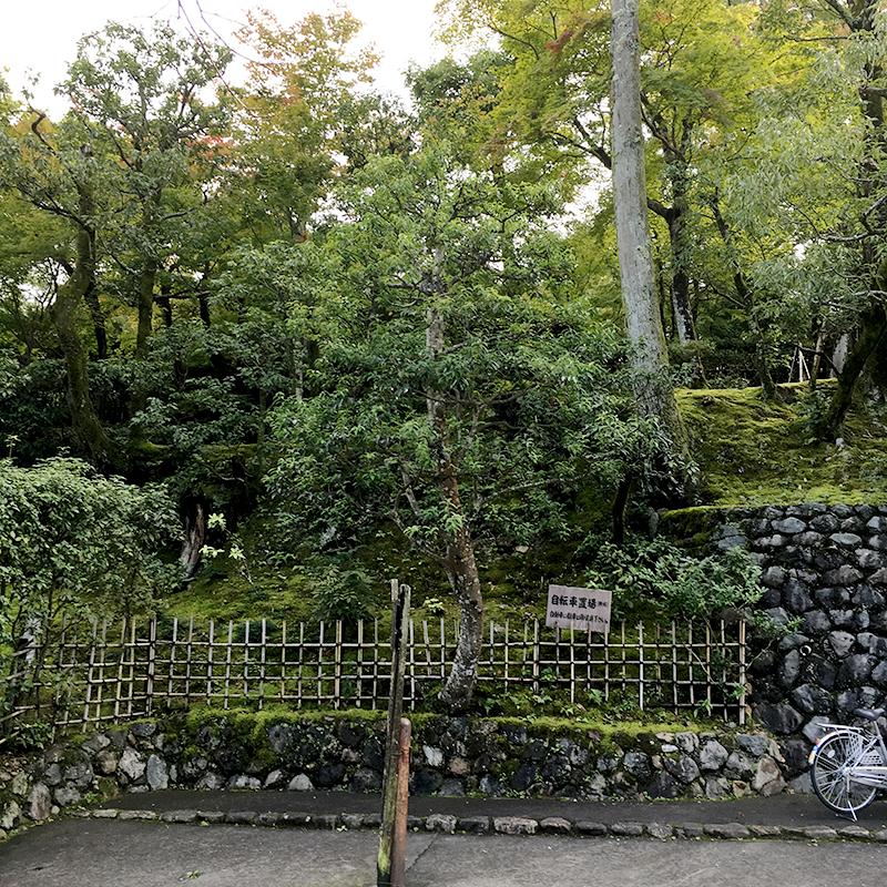 京都市右京区嵯峨野の情緒あふれる街並み