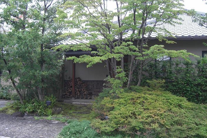 三浜町の木と石たち