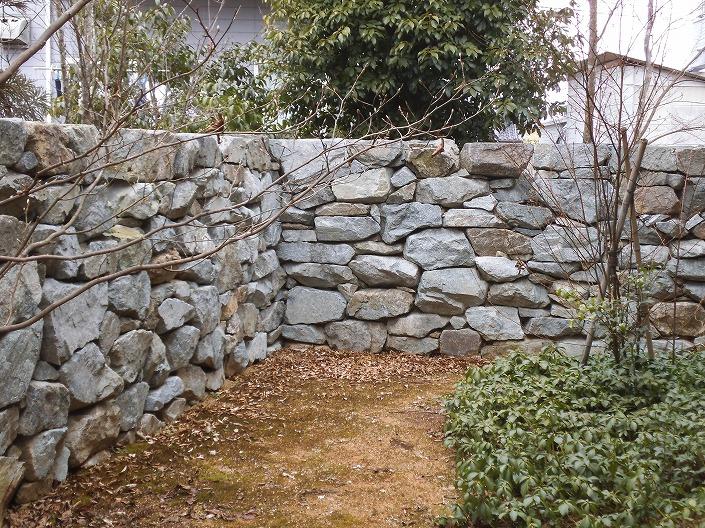 津山の石積みと植物