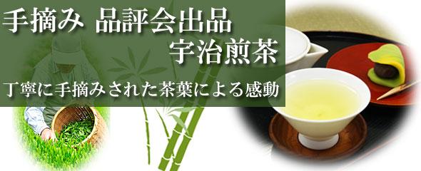 手摘み 品評会出品 宇治煎茶